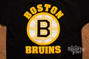 Vintage Boston Bruins T-Shirt, Starter